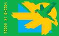 Bandeira do Bairro da Saúde